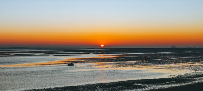 Framework for the Supply of Specialist Bank Staff – Southend on Sea